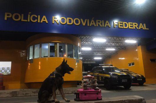 PI: PRF apreende drogas dentro de mala em ônibus avaliadas em R$ 145 mil