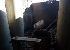 Criminosos matam animais e ateiam fogo em propriedade rural de Francisco Macedo