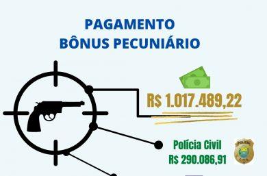 Piauí paga mais de R$ 1 milhão por apreensões de armas à policiais