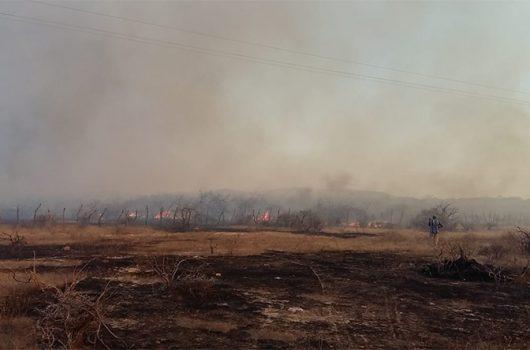 Três mil focos de incêndio aconteceram em apenas 30 dias no Piauí