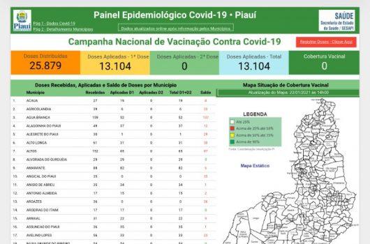 Governo lança vacinômetro para acompanhar vacinação no Piauí