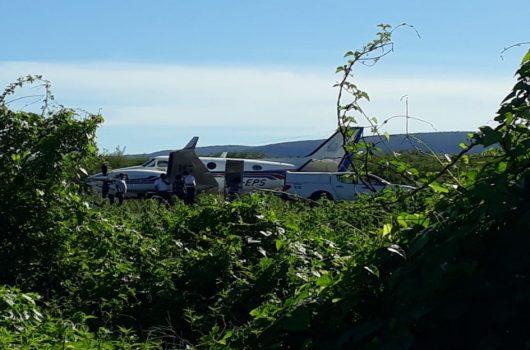 Avião com doses da vacina da covid-19 bate em jumento durante pouso na Bahia