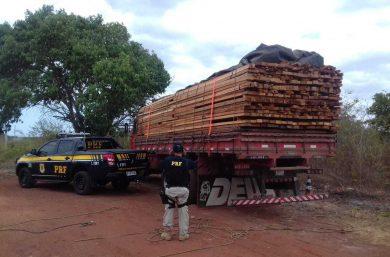 Investigação criminal apura transporte de madeira sem licença no Piauí
