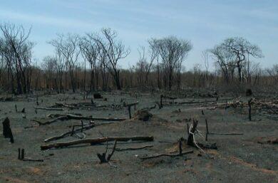 Governo Federal reconhece situação de emergência pela seca em São Raimundo Nonato