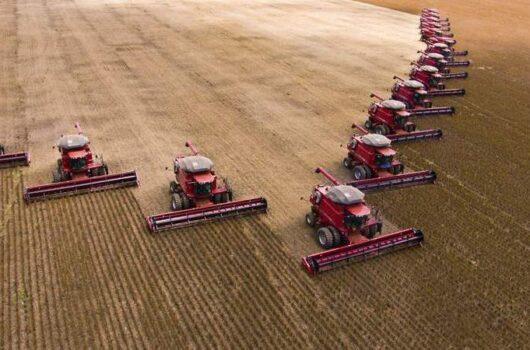 Área de plantio de soja cresceu 120% em dez anos no Piauí, diz IBGE