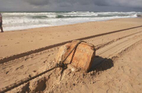 """Pesquisa revela que """"caixas misteriosas"""" encontradas no litoral nordestino são fardos de borracha de outro navio nazista"""